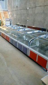 خط تولید یخچال مرغ و ماهی در کارخانه